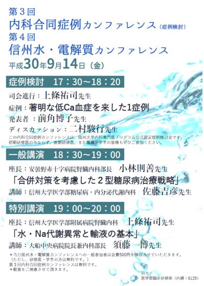 水電解カンファ)300914.PNG